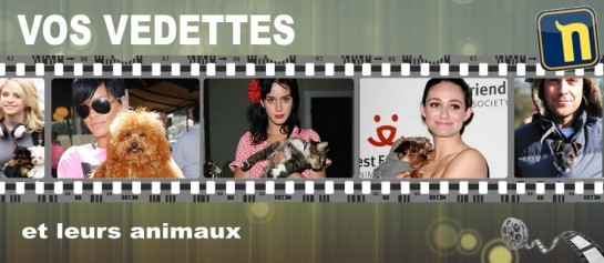 Rubrique Actualité Animale People