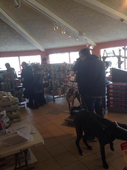 Coupe de Griffes gratuite - Le jardin des animaux - Grande animalerie sherbrooke