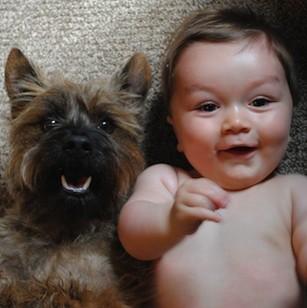 Rencontre chien et chiot