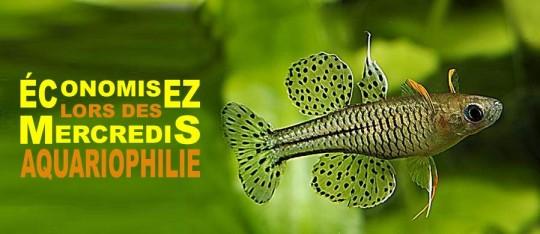 Le Jardin Des Animaux escompte sur poisson