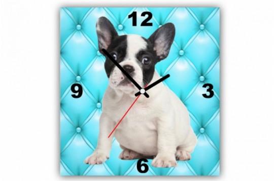 tableau-horloge-chien-bulldog-sur-fond-turquoise-capitonne-30x30-cm-15091_680x450