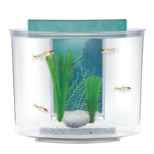 Aquarium marina splash le jardin des animaux for Produit pour aquarium